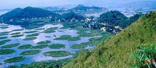 Nagaland Tour