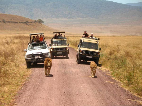 9 Days Spectacular Tanzania Safari Tour