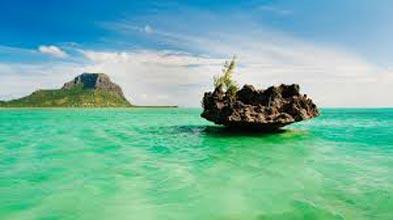 Kids Travel Free! 4 The Ravenala Attitude - Mauritius Tour