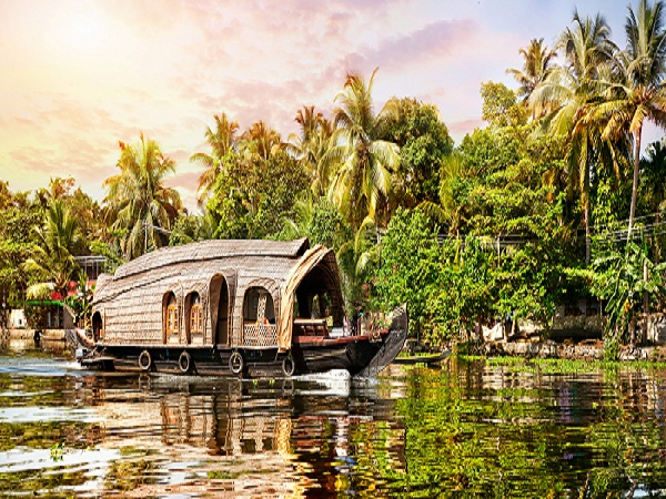 Munnar With Alleppey Tour