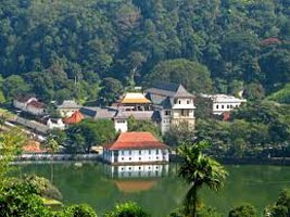 Lovely Sri Lanka Tour