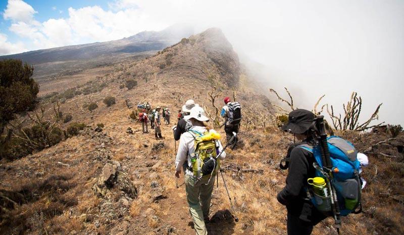 Mount Kilimanjaro-Lemosho Package