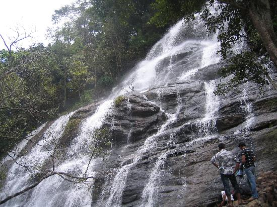 Yercaud Tour Package