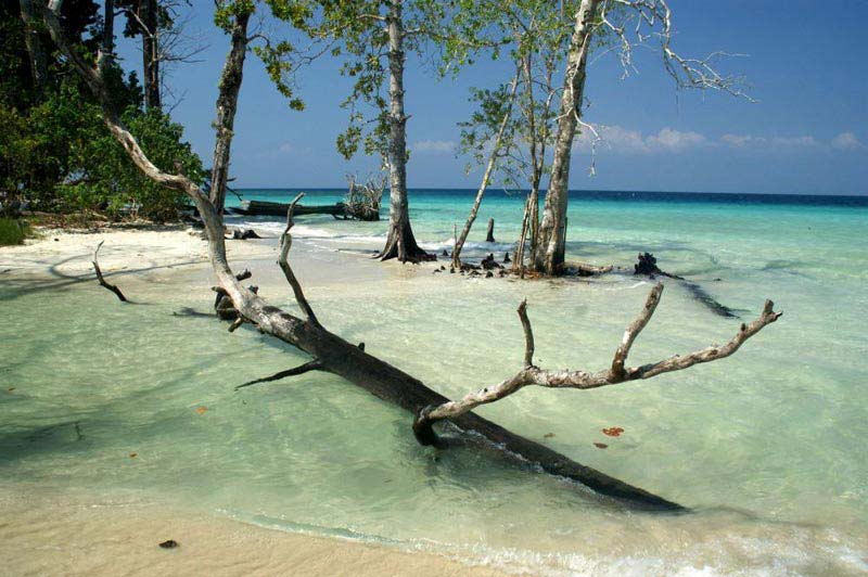 Andaman Luxury Tour Package