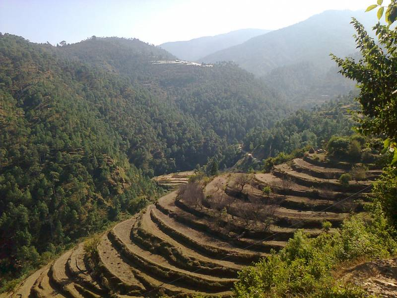 Hills Of Kumaon Tour