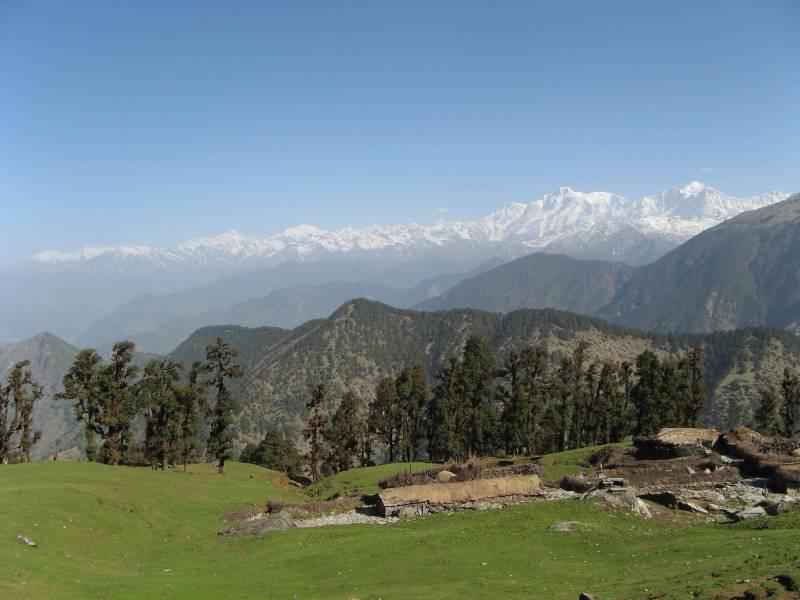 Birding In Uttarakhand (makku, Chopta & Tunganath) Tour