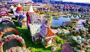 Dubai With Miracle Garden Tour