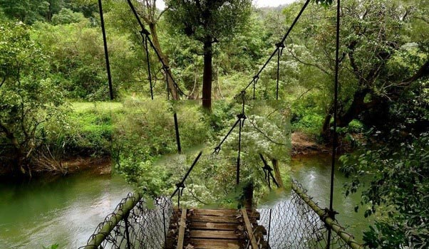 Mysore & Coorg Tour Package