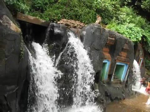 Chikmagalur With Bhadra Wildlife Sanctuary Tour