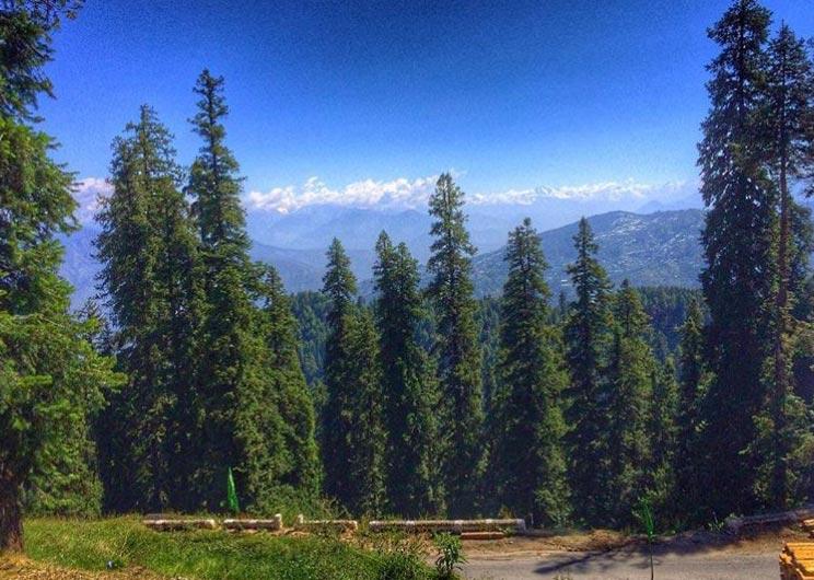 Precious Shimla Dharamshala Tour