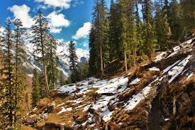 Discover Himachal Tour (08night/09days)