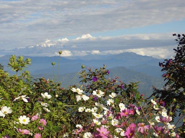 Sikkim Darjeeling 5N  6D Tour