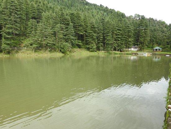 Shimla - Manali - Dharamshala - Dalhousie - Amritsar Tour.