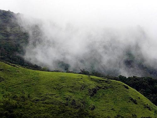 Bangalore - Mysore - Ooty - Coorg Tour