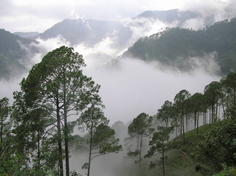 Nebulous Nainital Package