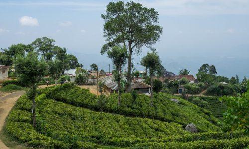Ramayana Trail With Sankari Devi Shakti Peetam - Best Of Sri Lanka Tour