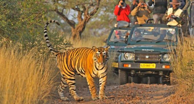 Delhi Ranthambore Weekend Tour 2night 3 Days