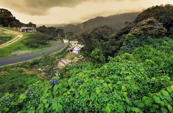 Short Escape To Wayanad Tour