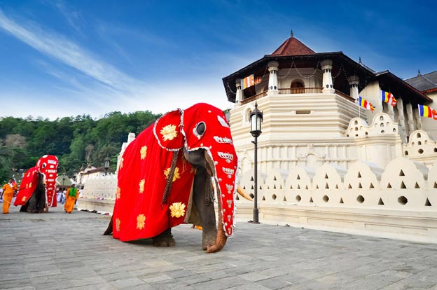Sri Lanka  Delights Package