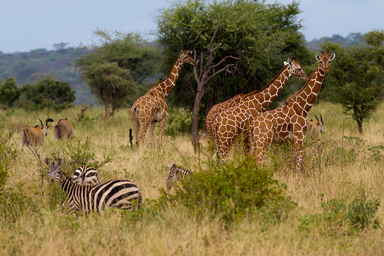 Short And Sweet Package 2 Nights And 3 Days Tour
