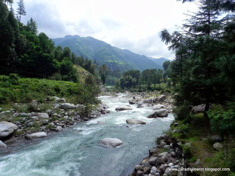 Barot Valley Cycling Tour