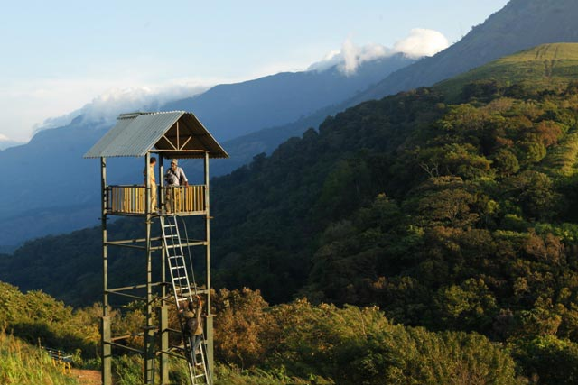 Hill Station Solitude Of Kerala Tour