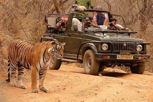 Jaipur & Ranthambore Tour Package