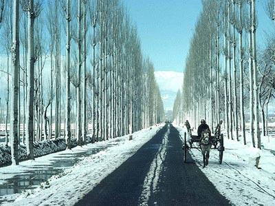 Kashmir - Vaishno Devi - Patnitop Tour ( 14 Day)