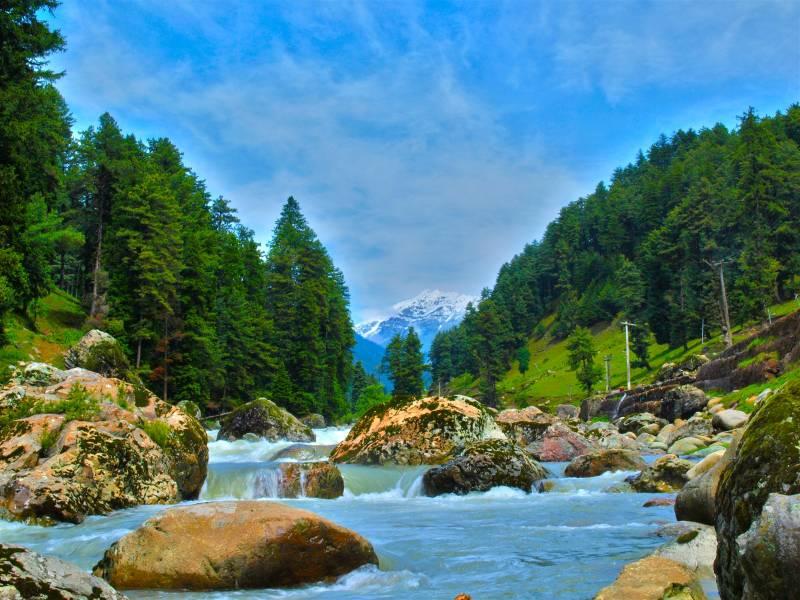 Kashmir Blooming Tour