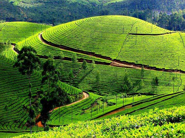 Beautiful Karnataka With Tamilnadu 7n/8d) Tour