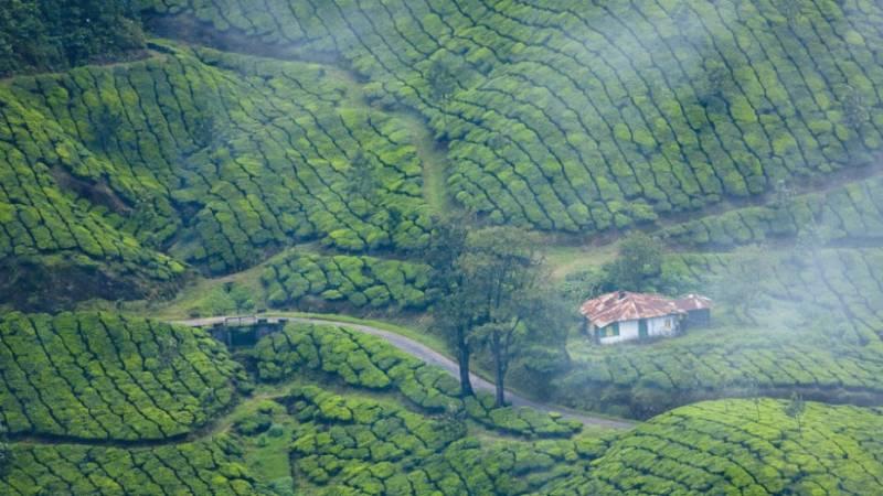 Fascinating Kerala Tour 5n/6d