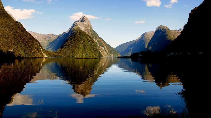 New Zealand Bonanza