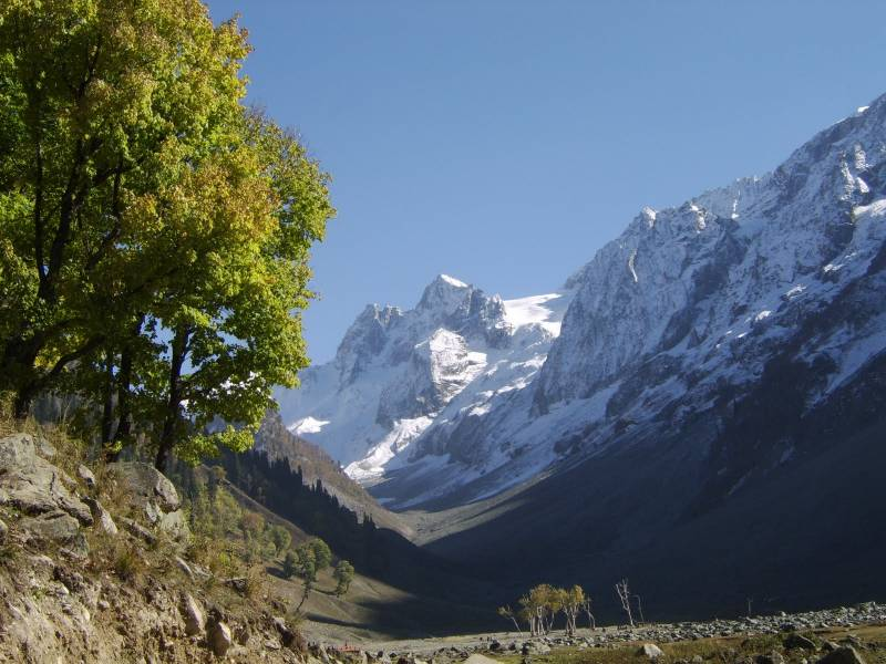 Darjeeling-kalimpong-gangtok 6 Days Tour Package