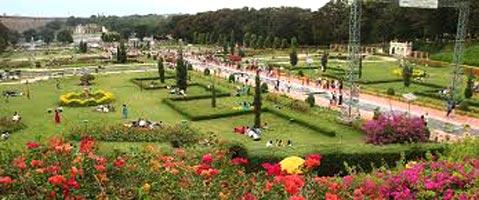 Mysore Ooty Kodai Tour- Honeymoon
