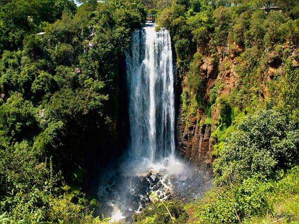 Discover Kenya Tour