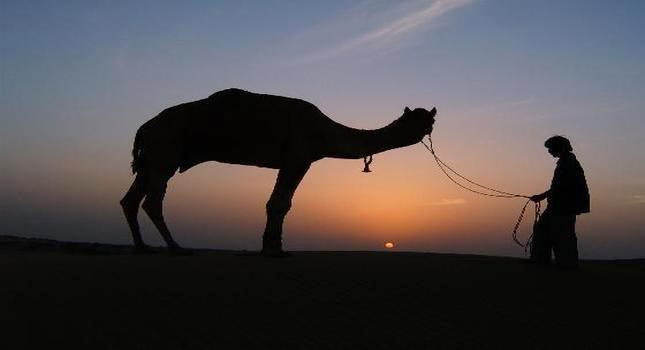 Rajasthan 4 Star Package For 8 Days