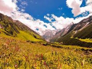Amorous Dale (Mirik 1N - Darjeeling 2N - Pelling 2N - Gangtok 4N - Lachen 2N - Lachung 2N - Kalimpon