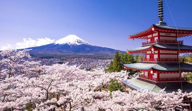 Japan – 5 Days In Tokyo, Fujikawa Tour