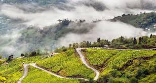 Darjeeling Gangtok Package