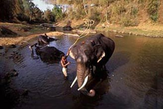 South India 15 Days Tour Package