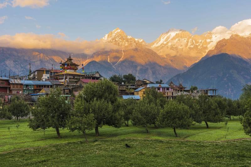 Shimla - Kinnaur Sarahan - Sangla - Kalpa Package Tours