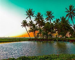 18 Nights 19 Days Kerala With A Difference Tour