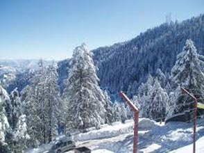 Shimla Manali Solang Kullu Kasol Honeymoon Package