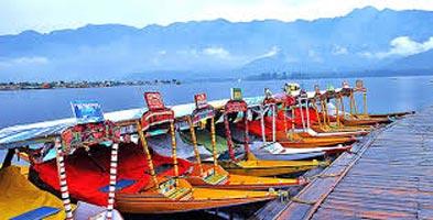 Kashmir Panorama Holydays Tour