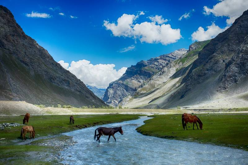 All Inclusive Ladakh Tour