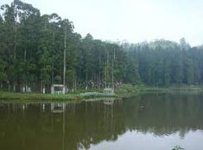 Sundarbans National Park Tour