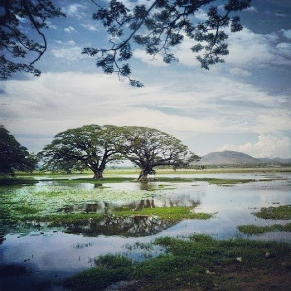 Ramayana Trails Sri Lanka Tour - 7 Days