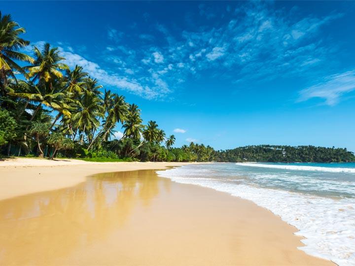 Sri Lanka Beach Tour - 12 Days