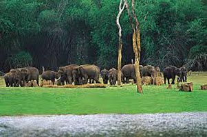 Tamil Nadu With Kerala Tour 13Nights/14Days