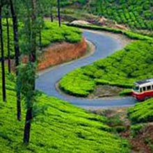 Bangalore-Mysore-Ooty Bus Package